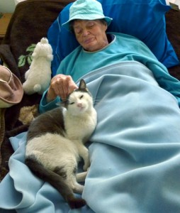 Carol Wright's mom recovering while feline St. Booboo comforts her